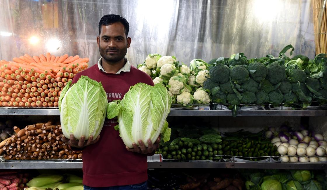 """印度市场出售的""""中国蔬菜"""""""