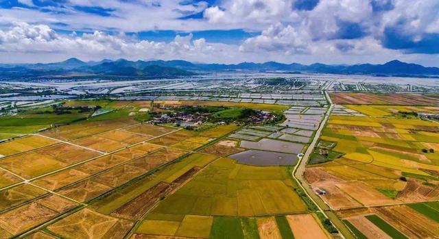 三农创业,国家多部门发文鼓励支持返乡下乡创业!