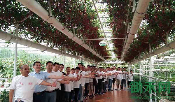 第十七期中国(寿光)无土栽培暨寿光有机蔬菜高产技术培训班