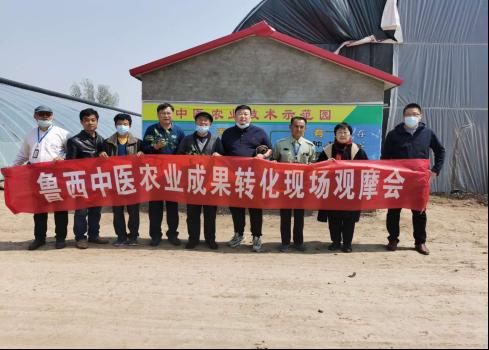 刘若帆秘书长考察鲁西中医农业技术示范园